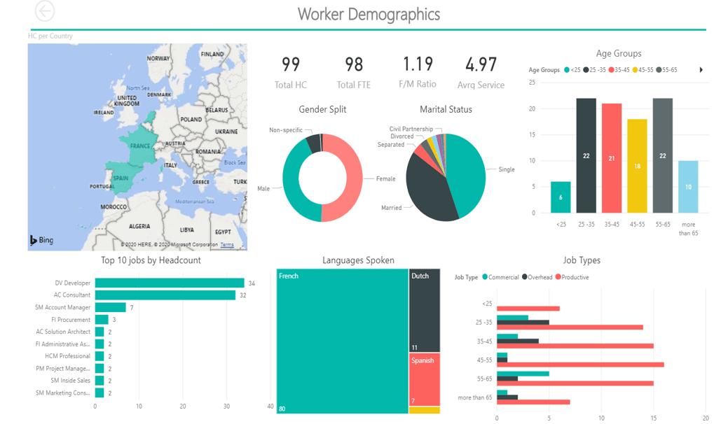 Power BI Human Resources Worker demographic report